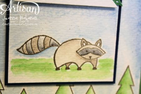 Life in the Forest Birthday card detail raccoon