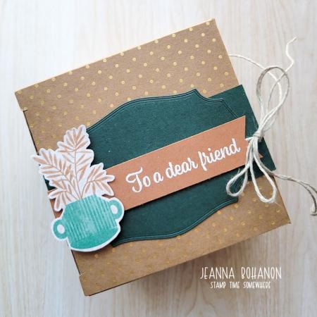 OSAT Plentiful Plants box Jeanna Bohanon